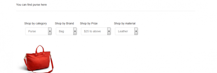 How to add Custom Shopify Filters